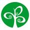 Dcc facebook logo