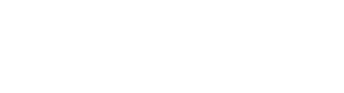 DSM FIRST